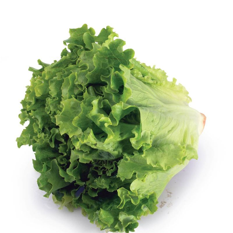 Frutas-y-Verduras-Verduras-Verduras-Para-Ensaladas_232_3