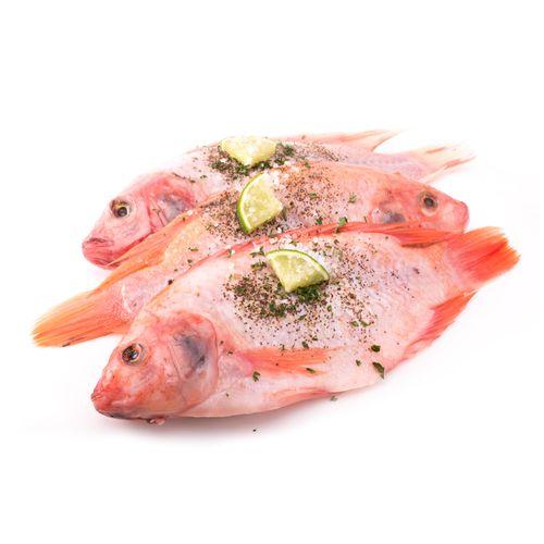 Pescado Tilapia Roja Sin Escama X Unidad