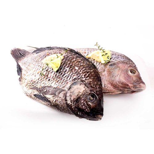 Pescado Tilapia Gris Sin Escama X Unidad