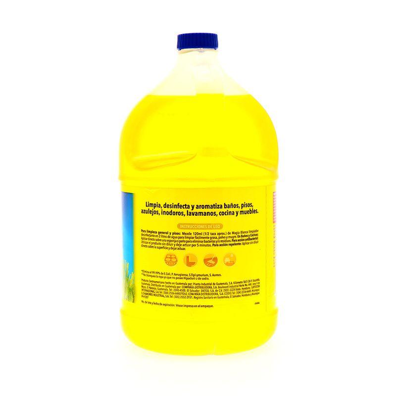 Cuidado-Hogar-Limpieza-del-Hogar-Desinfectante-de-Piso_785381014678_3.jpg