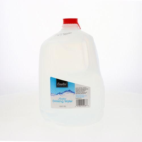 Agua Essential Everyday 1 Gl