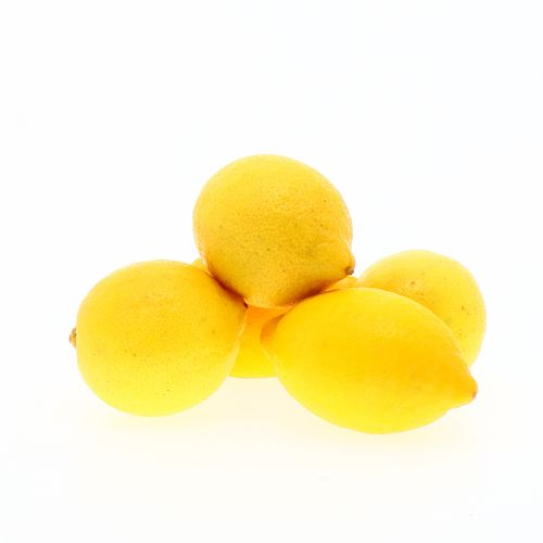 Limón Amarillo Usa x Lb