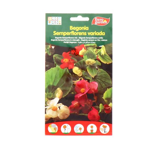 Semilla De Begonia Eurogarden Variada 60Mg